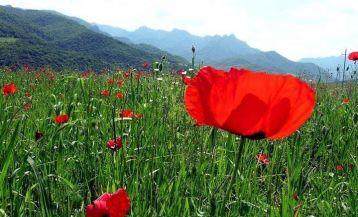Urlaub in Nagorno Karabakh