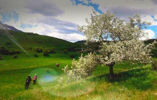Transcaucasian Trail Armenia